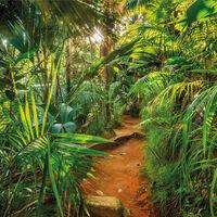 Komar Fotobehang Jungle Trail 368x254 cm