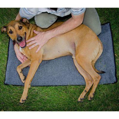 FitPAWS Honden uitstrekmat K9FITbed M/L grijs