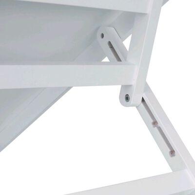 TRIXIE Huisdierenloopplank hoogte verstelbaar 36x90 cm MDF wit 39375