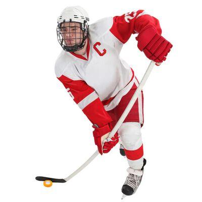 Pure2Improve IJshockey rebounder 65 cm P2I120000