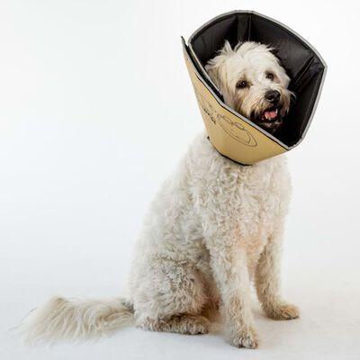 All Four Paws E-halsband Comfy Cone XL 30 cm tan