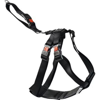 FLAMINGO Autoveiligheidstuig maat S 35-50 cm zwart 1032109