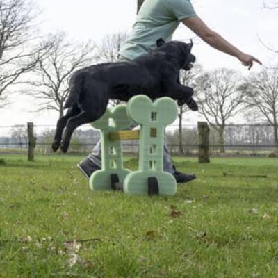 Holland Animal Care Honden behendigheidset voor binnen en buiten