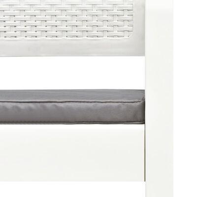vidaXL Tuinbank 2-zits met kussens 120 cm kunststof wit