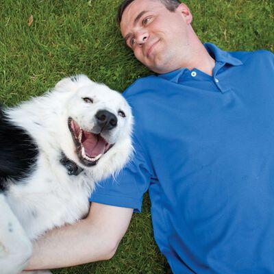 PetSafe Draadloos huisdier inperkingssysteem 3,6+ kg 55 m grijs 6085