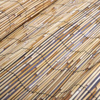 vidaXL Tuinomheining 500x125 cm riet