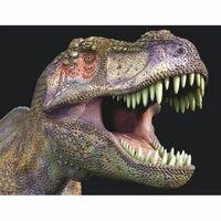 Dieren magneet 3D T-rex