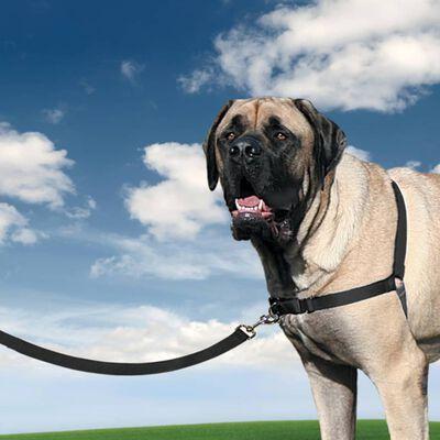 PetSafe Hondentuig Easy Walk XL zwart