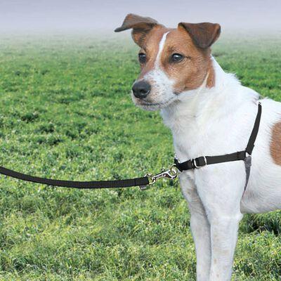 PetSafe Hondentuig Easy Walk S zwart