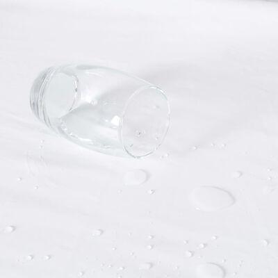 vidaXL Matrasbeschermers 2 st waterdicht 60x120 cm katoen wit