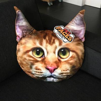 Pet Faces Huisdierenkopkussen Maine Coon kat
