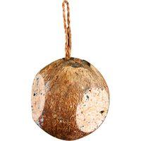 Gevulde Hele Kokosnoot