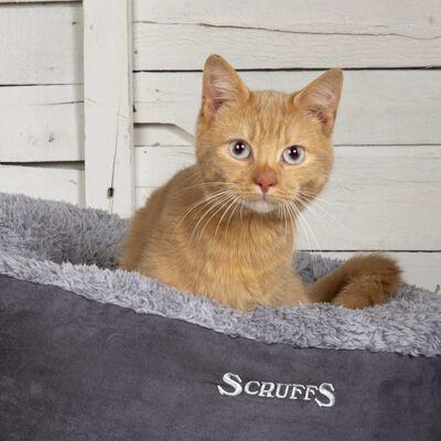 Scruffs Kattenmand Cosy grijs