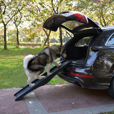 @Pet Hondenhelling opvouwbaar 152 cm zwart 10051