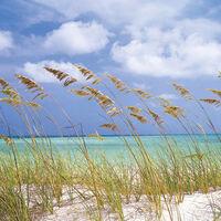 Komar Fotobehang Ocean Breeze 368x254 cm