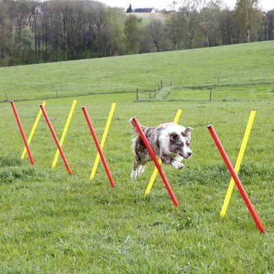 Kerbl Honden behendigheid trainingsset rood 80758